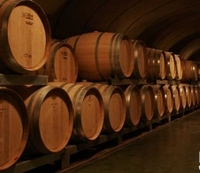 Mendoza Wine Tour with Optional Lunch Photos