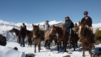 Mountain Horseback Riding Tour from Santiago Photos