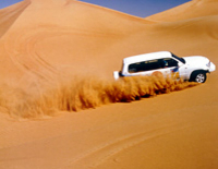 Private 4x4 Safari: Taste of the Arabian Desert Day Trip from Dubai Photos