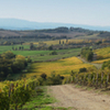 Private Tour: Guided Hike in Tuscany with Transport from Siena
