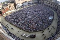 Siena's Palio Horse Race Including City Tour Photos