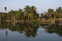 Small-Group Cultural Tour of Kerala Backwaters in Kochi Photos