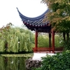 Vancouver Walking Tour: Gastown and Chinatown