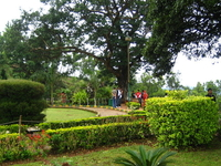 Ambazari Garden