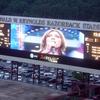 The PigScreen At Stadium