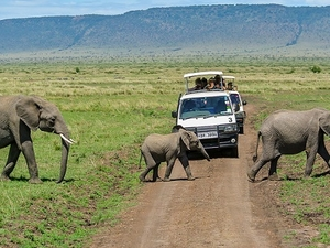 Maasai Mara Camping Safari Photos