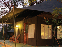 Camping @ Pench with Pench Jungle Camp
