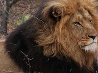 Namibia - Botswana - Victoria Falls Tour
