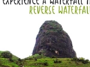 Reverse Waterfall Trek to Anjaneri Fotos