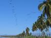 Ixtapa Playa Linda