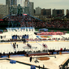 Hockey Rink Layout