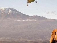Climb Kilimanjaro By Helicopter