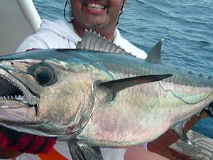 Manado Sport Fishing