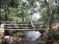 Bee Fall Bridge