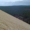 Visitors Enjoying The Scenery Of The Landes