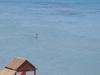 Faros Beach In Pervolia Village