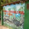 Kachikally Crocodile Pool And Museum Entrance