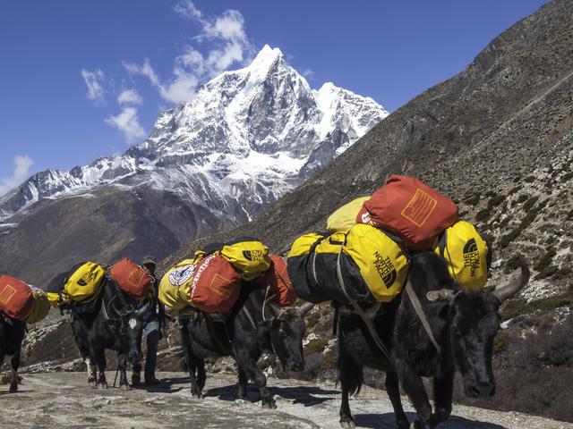 Island Peak Expedition Photos