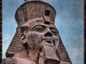 Package Tour to Egypt Fotos