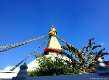 Boudha Stupa And Flowers1