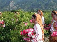 Bulgaria - The Beautiful Rose Valley Tour