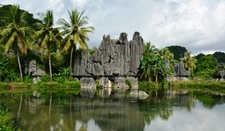 Karst Tower, Maros - South Sulawesi
