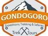 Gondogoro Trek N Tours