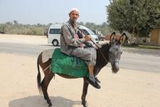 Real Egypt School Trips 37