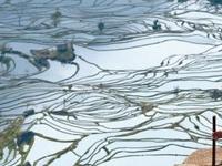 Viaje a Yunnan: Yunnan Diverso