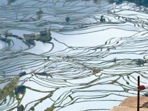 Viaje a Yunnan: Yunnan Diverso Photos