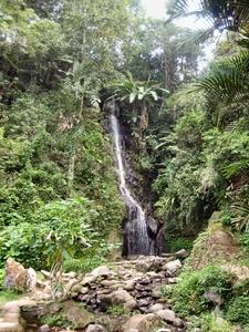 Kebun Raya Cibodas Waterfall
