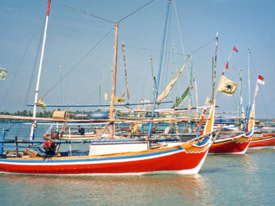 Fishing Boats In The Main Harbour