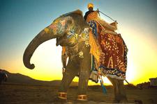 Magical Rajasthan Tour1