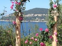Rothschild Gardens1