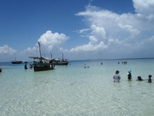 Snorkeling & Dolphin Watching