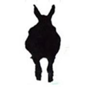 DonkeysTravel RealNepal