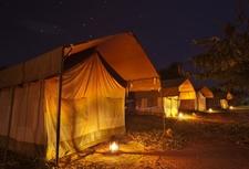 Safari Tents By Night