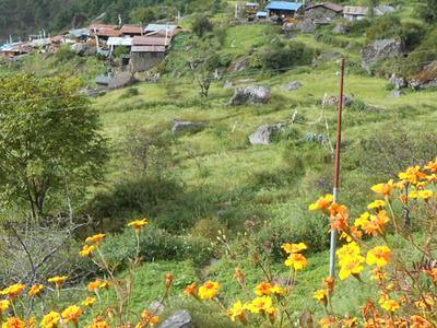 Tamang Briddim Village