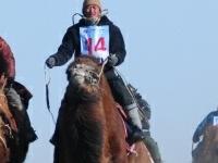 Camel Festival Mongolia Camel Trekking Tours