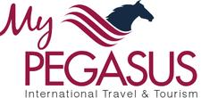 Pegasus Brand