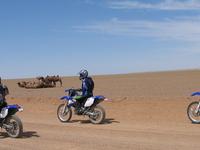Gobi Motorbike Pic 1