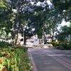Plaza Ezequiel Zamora Barinas