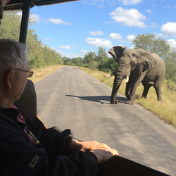 4 Day Safari 31