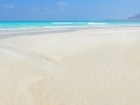 Socotra Holidays and Tours