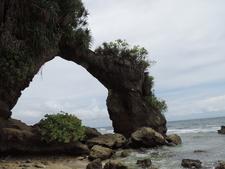 Andaman 393