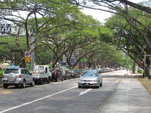 East Coast Park Service Road