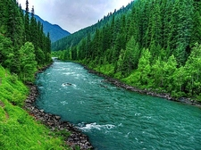 How Grean Is Kashmir Valley
