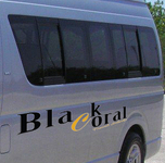 Vehicles On Our Company