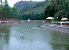Pedong Kalimpong2r