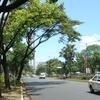 Quezon Avenue Manila